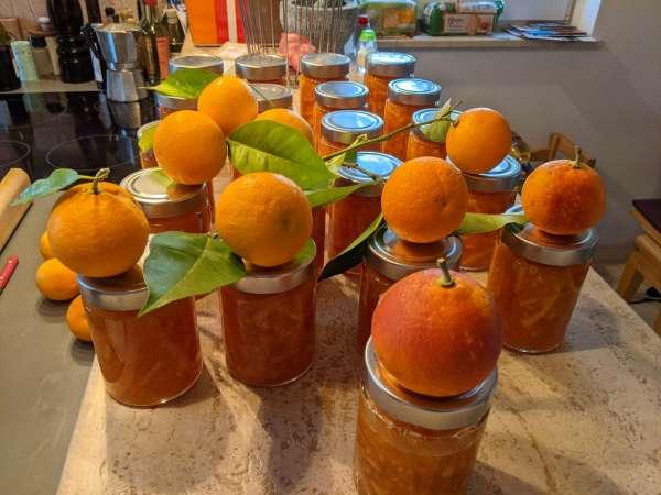 Orangengl-serOrangenKlein
